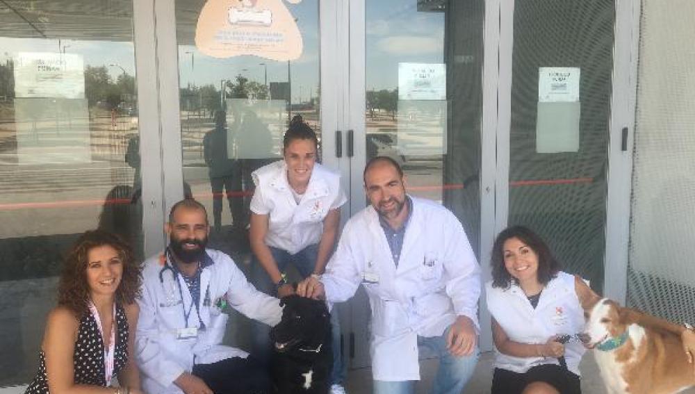 El Hospital Rey Juan Carlos abre sus puertas a los perros